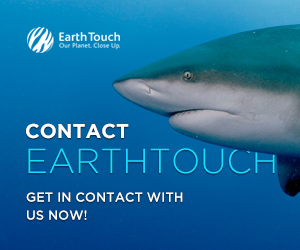 Earth Touch News